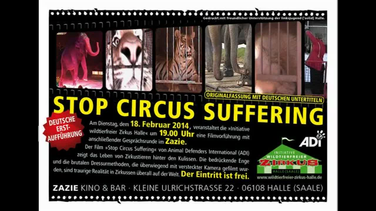 Diskussionsrunde STOP CIRCUS SUFFERING