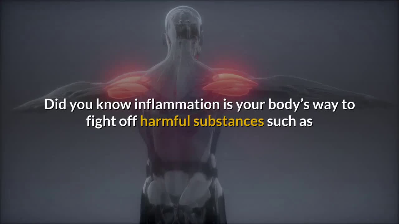 How Chronic Inflammation is Linked to Gut Health